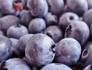 Growing blueberries like these are easy with these garden tips.