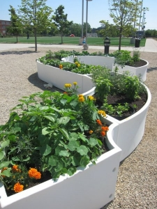 Kitchen community uses modular garden pieces to grow food