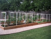 Raised beds for warm weather veggie gardens