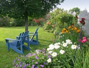 The Sanctuary Soil Garden Writers Team will provide a wide variety of gardening tips for your home garden. So, it looks as pretty as this backyard.