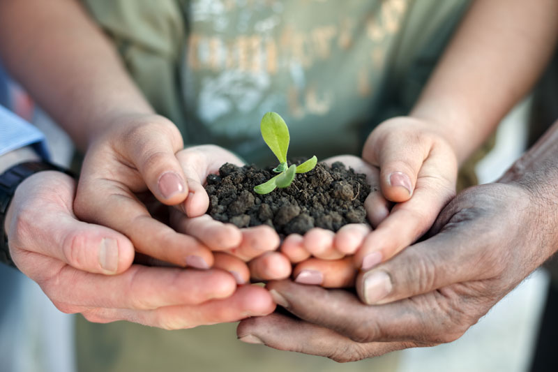 People of all ages hold soil and plant. All ages are invited to this Sanctuary Soil gardening class