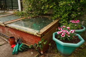 A cold frame will help you grow food in fall and winter, when the weather gets cold.