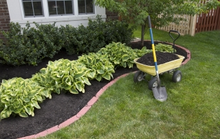 Buying bulk soil and amendments is a good idea for big mulch projects like this one.