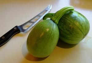 calabacita squash grows well vertically