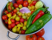 Colander with four top vegetables for container gardening
