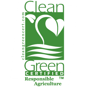 footer-clean-green-logo