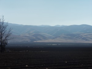 My job at Sanctuary Soil offers some of the best views in the Central Valley