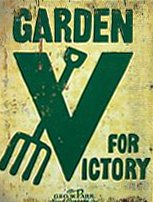 this publication gives general information for the - The Victory Garden