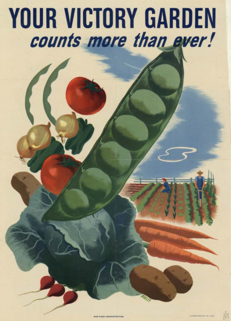 The victory garden then and now for What was the goal of victory gardens